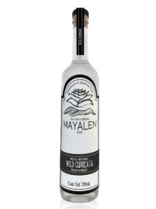 Mayalen Wild Cupreata