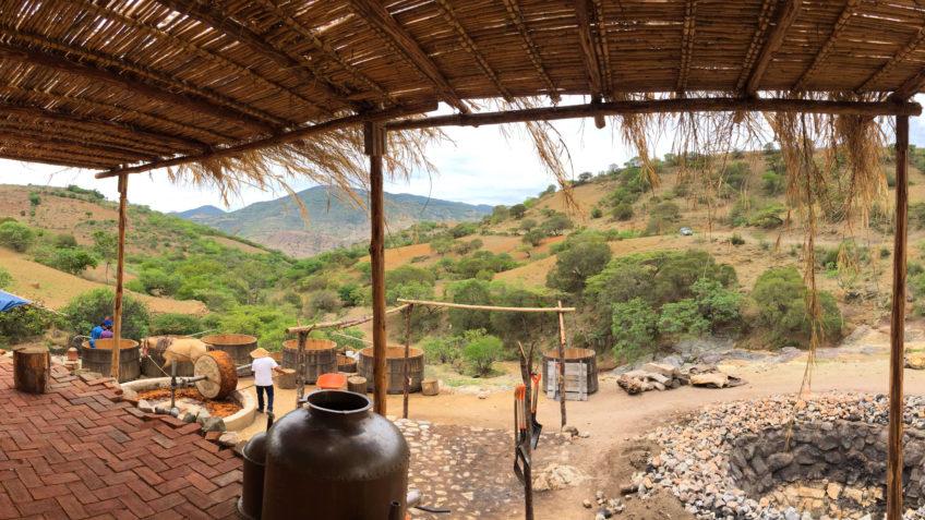 Mezcal Union Palenque Pano