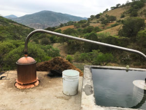Mezcal Union copper still