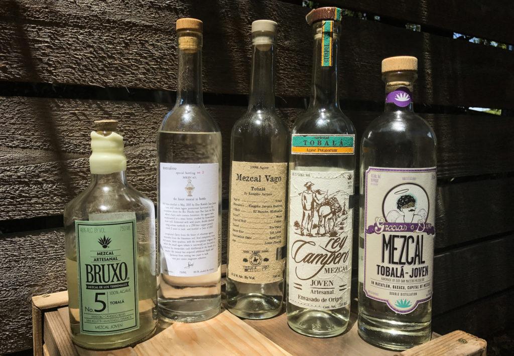 Agave Tobala Mezcal Bottles