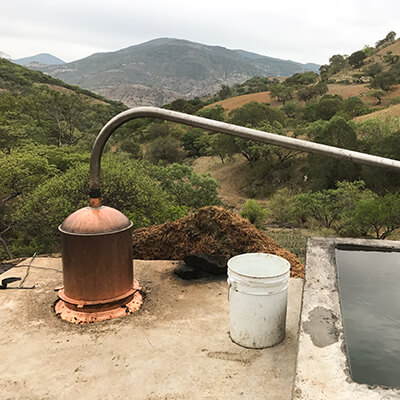 Copper Still Mezcal Distillation