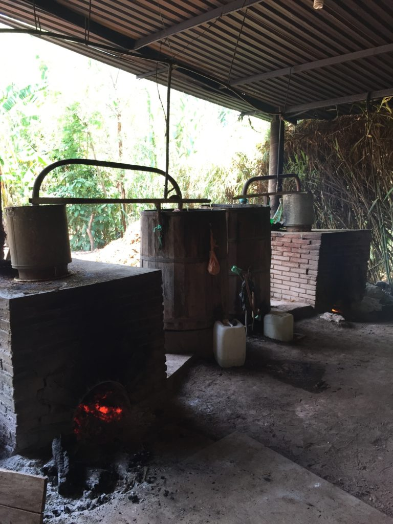 Mezcal distilling at the Pacheco family palenque in Ejutla, Oaxaca, Mexico