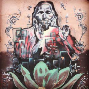 Agave Street Art Oaxaca