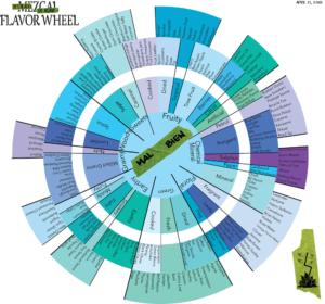 Mezcal Tasting Wheel