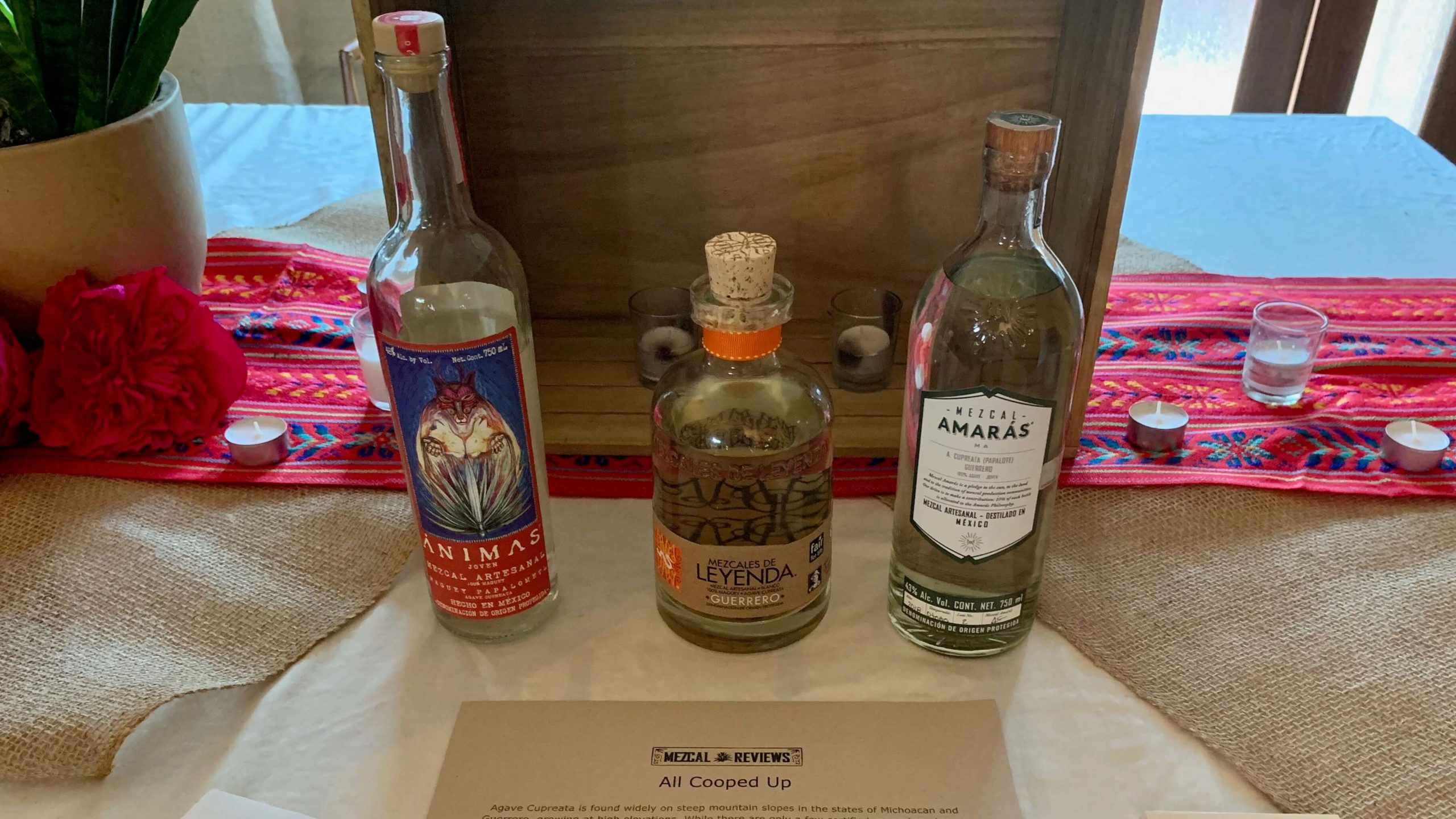 Mezcal Reviews Tasting Cupreata Flight