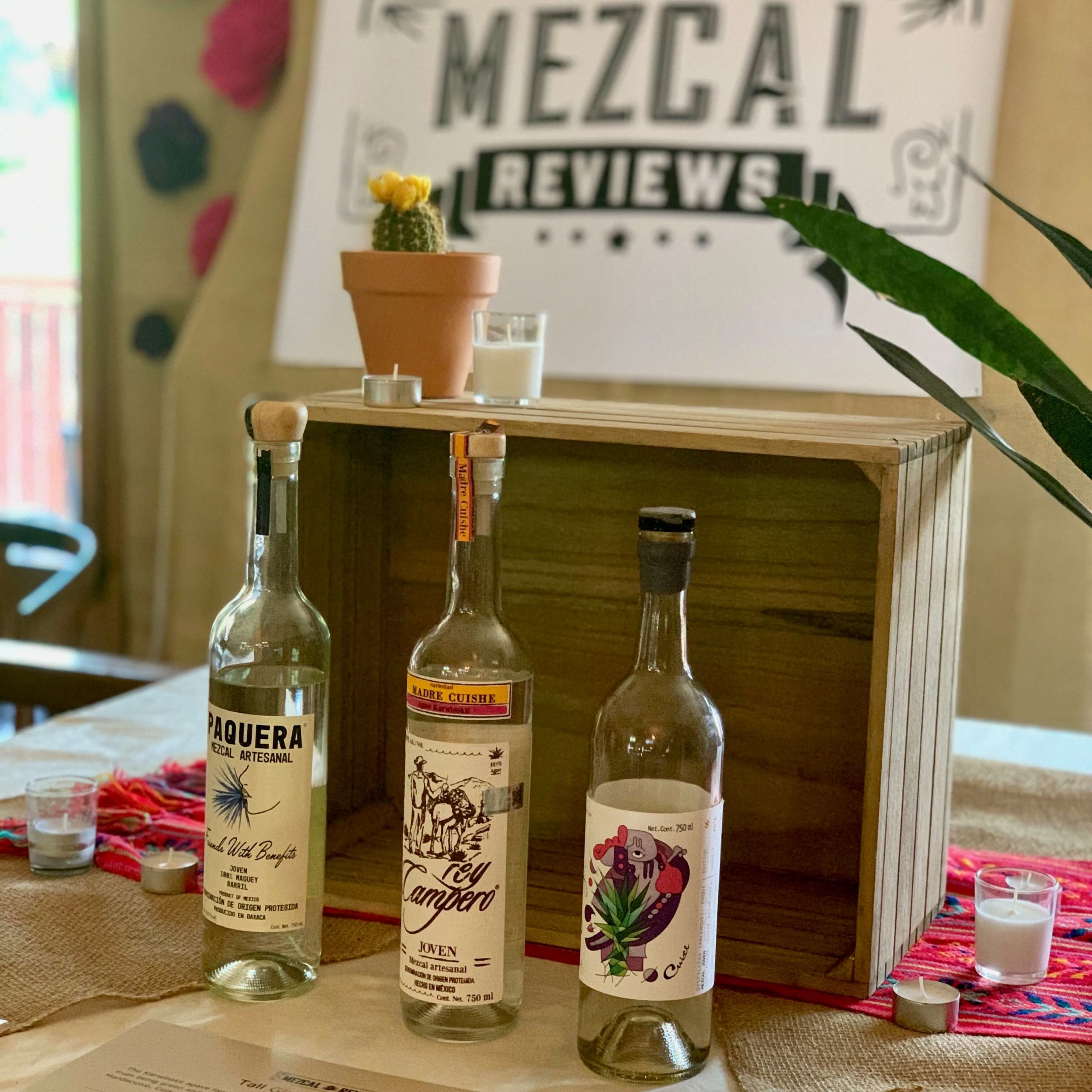 Mezcal Reviews Tasting Three Bottle Flight