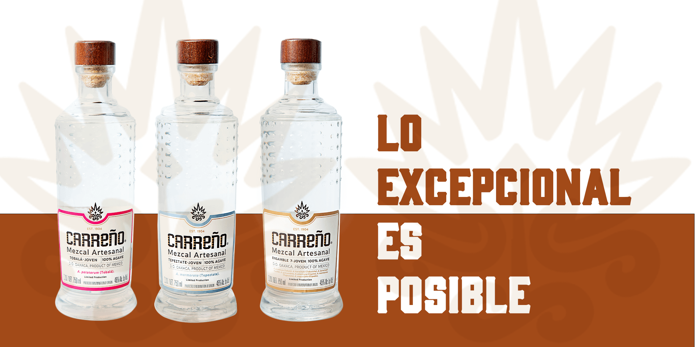 2.1 Ratio Carreno Mezcal