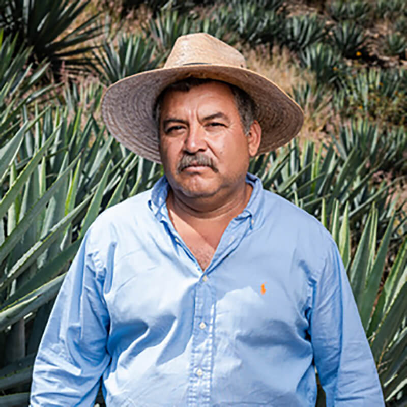 Mezcalero Vicente Sánchez Parada wearing a straw hat and standing in an agave field